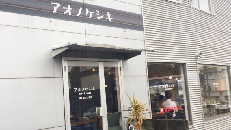 cafe&zakka アオノケシキ 写真