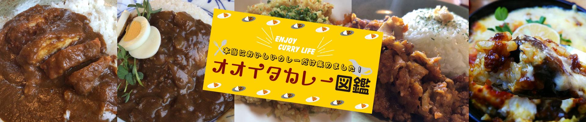 ENJOY CURRY LIFE 本当においしいカレーだけ集めました! オオイタカレー図鑑 広告画像(PC用)