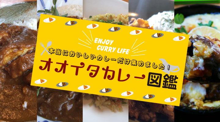 ENJOY CURRY LIFE 本当においしいカレーだけ集めました! オオイタカレー図鑑 広告画像(携帯用)